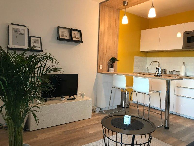 Studio face au Parc des Expos 3km de l'HyperCentre Nîmes, holiday rental in Milhaud