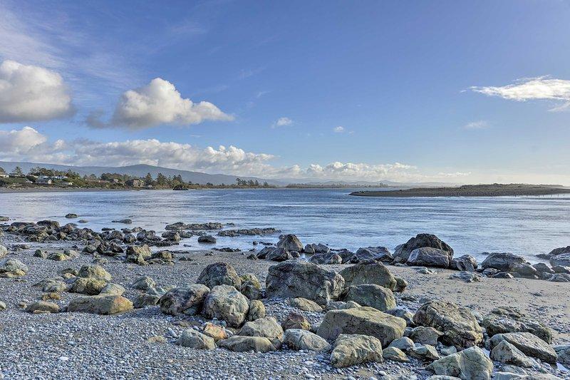leones marinos, focas, salmón, pelícanos y más residan en esta impresionante playa!