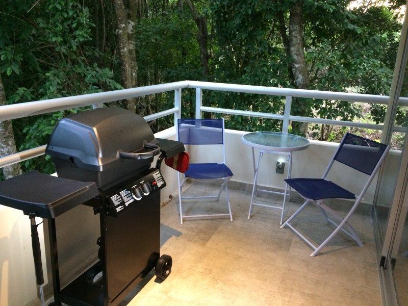 Barbecue au propane. Set Bristro