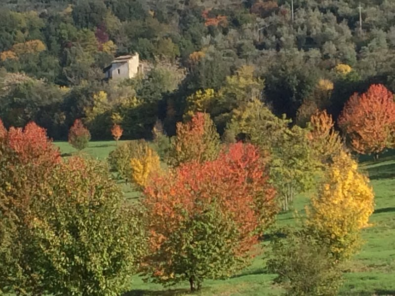 This part of Umbria is stunning in Autumn too