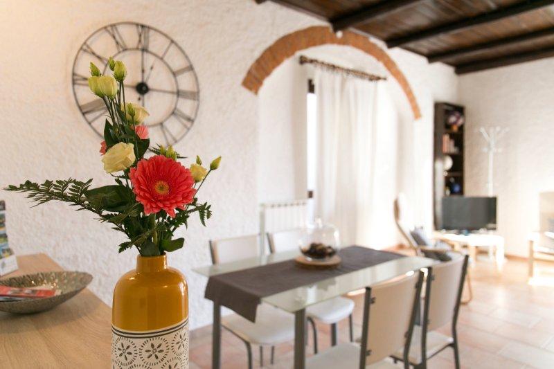 The Paper Mill - Appartamento con terrazza sul Lago Maggiore, holiday rental in Fosseno
