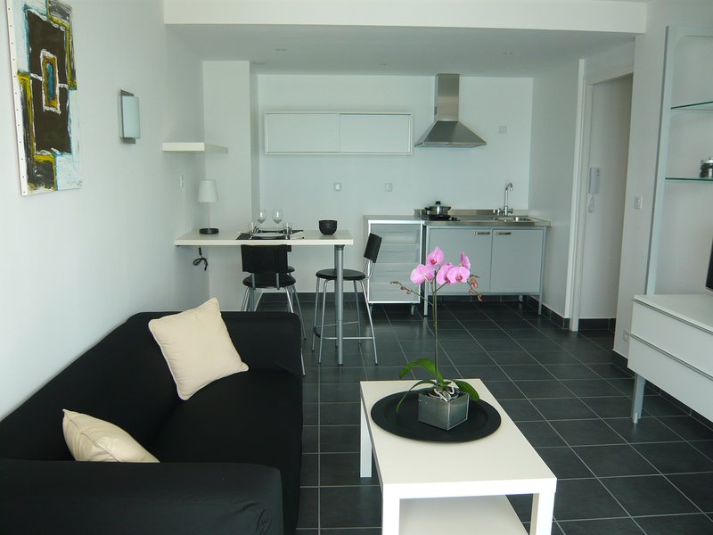 APPARTEMENT AU BORD DU LAC DU BOURGET, holiday rental in Voglans