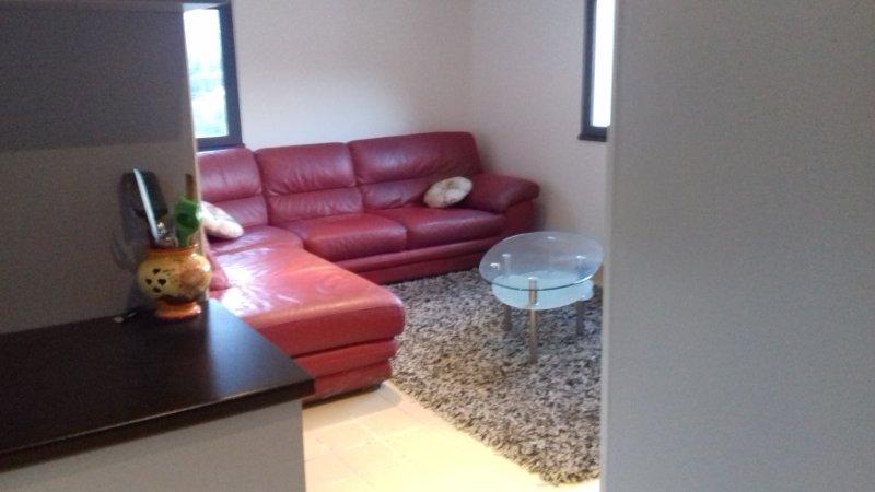 Loue appartement 2 pièces meublé vu mer et montagne a 3 kilomètres de  menton, holiday rental in Sospel