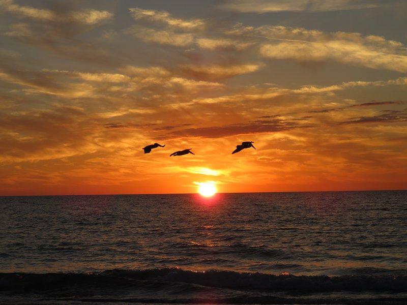 Sunset from the Gulf beach