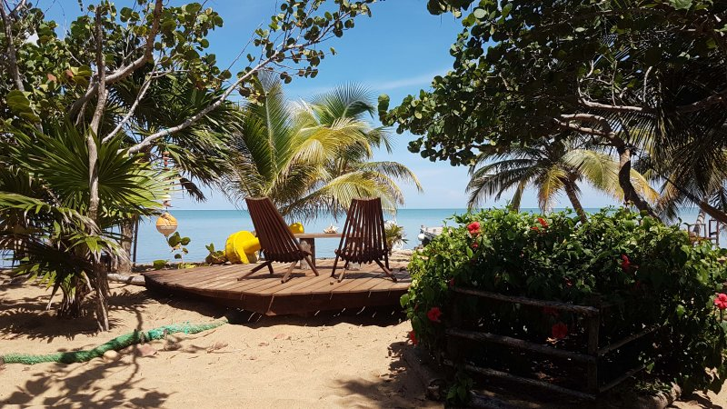 Bushstick Bungalow on the Beach at Leaning Palm Resort, holiday rental in Gales Point