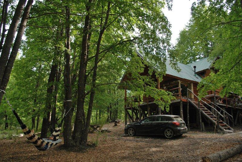 Casa Alto Palguin Pucon Hermosa Cabaña en el Bosque, alquiler de vacaciones en Curarrehue