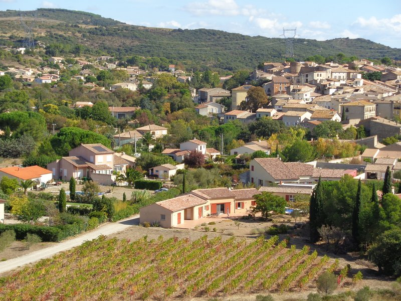 Villa on largeand peaceful property with swimming pool, terrace and vineyard, location de vacances à Neffiès
