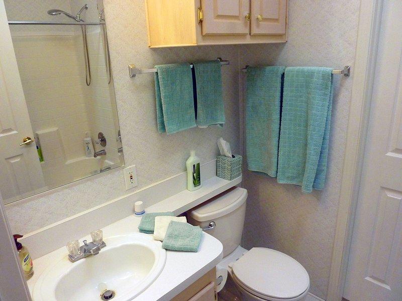 Secondo bagno è dotato di doccia e vasca combinazione