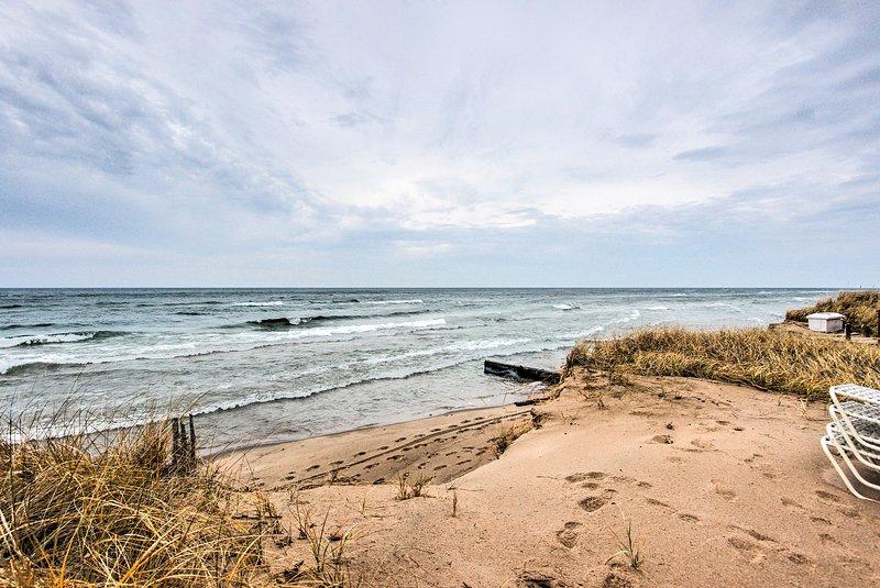 Cuando no estés aprovechando la línea de costa de la casa, ¡explora el área!