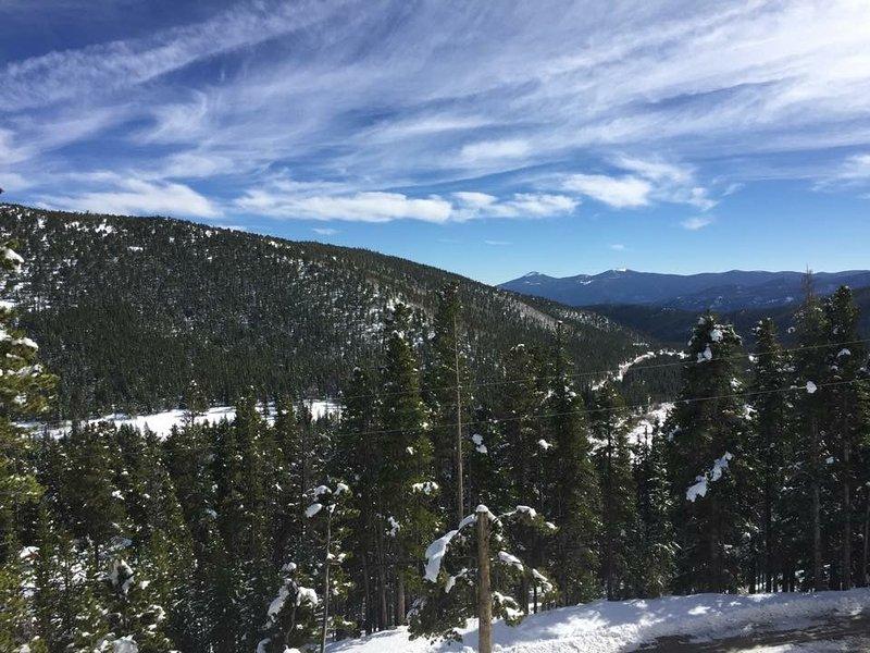 Cobertas de neve árvores - vista do deck!