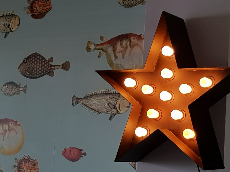 The star among the fish