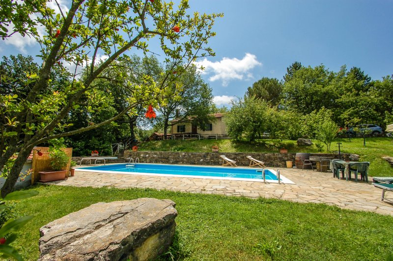 Detached house with private pool near Florence. Quiet area and panoramic views, holiday rental in Tavarnelle Val di Pesa