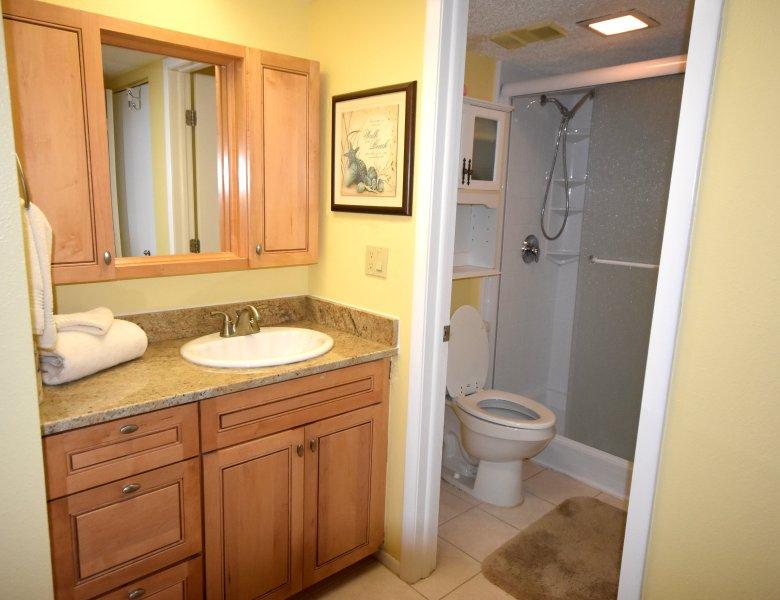 Salle de bain principale avec douche