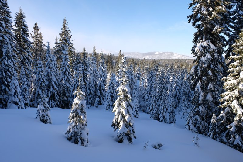 Nothing beats the view of fresh snow powdering the mountain landscape!