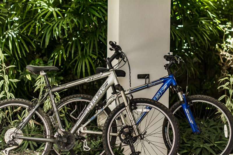 2 bicicletas de cortesía para mantenerse invitados.