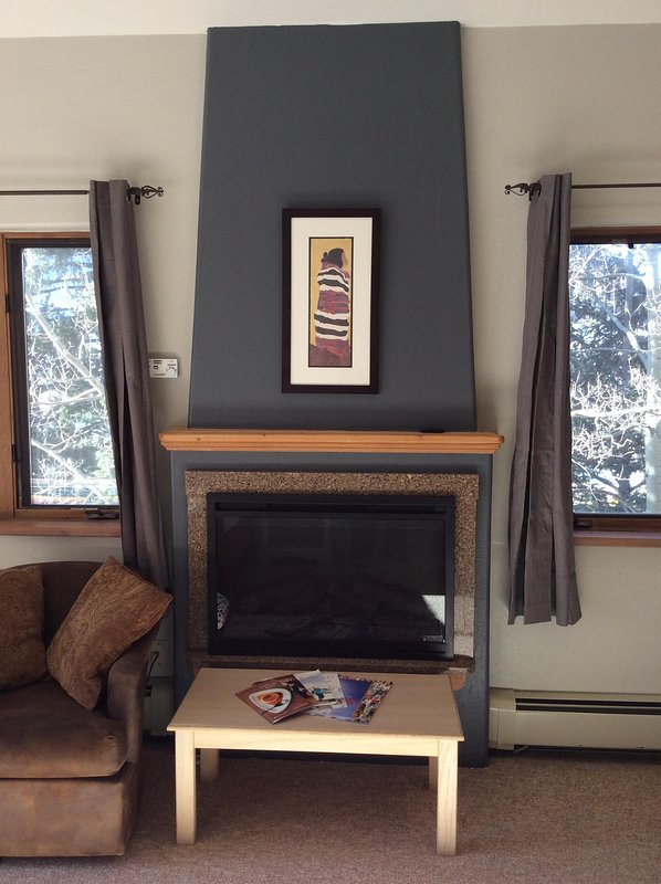 Fireplace #401