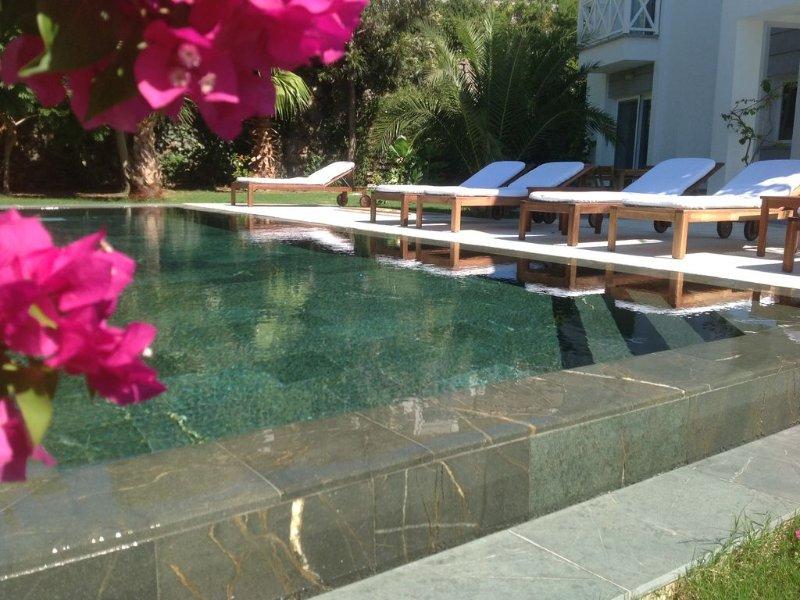 A piscina e jardim é para seu uso exclusivo da Villa