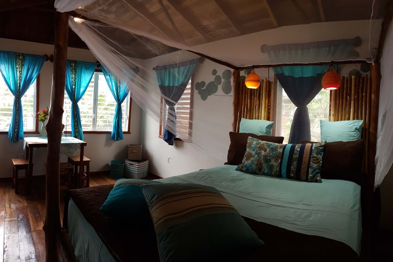 Driftwood Bungalow on the Beach at Leaning Palm Resort, holiday rental in Gales Point