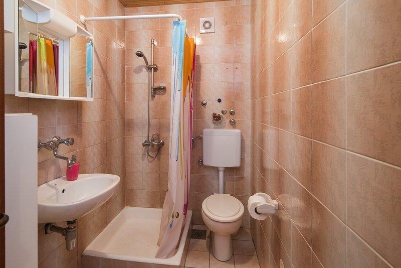 A1 (3 + 1): baño con inodoro.