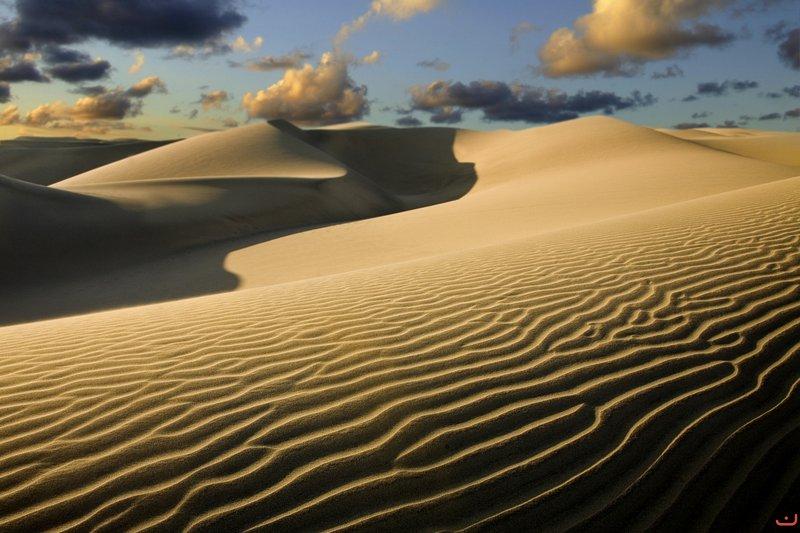 As dunas de Maspalomas, um must-see. Talvez um passeio a camelo !!
