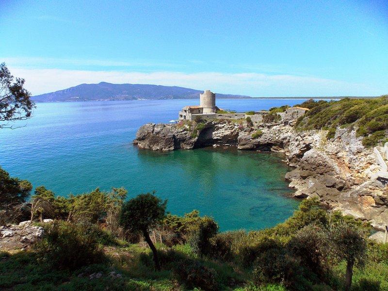Nunziatella Villa Sleeps 9 with WiFi - 5226895, vacation rental in Ansedonia