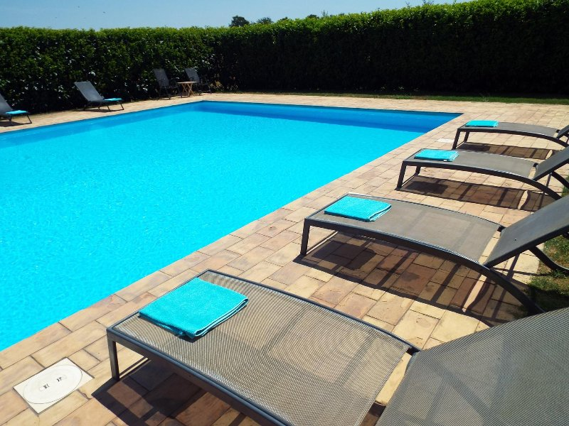 The pool has plenty of loungers and recliners