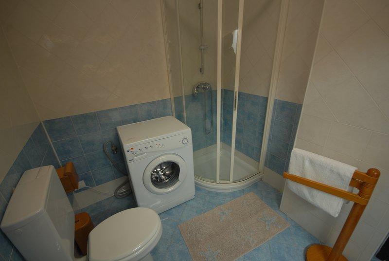 Bathroom with shower washing machine