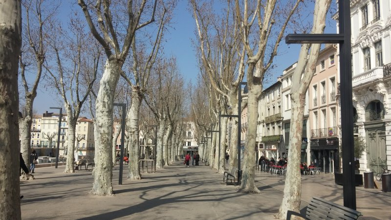 Narbonne in winter