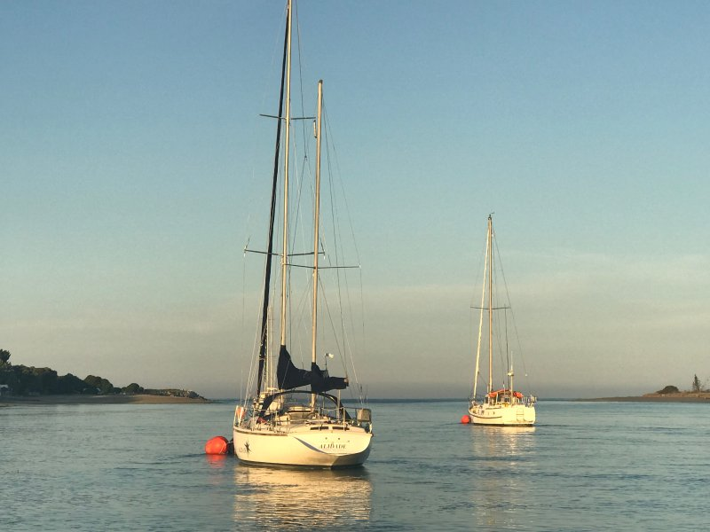 Mapua estuaire