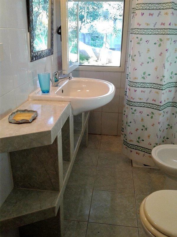 Cottage, 2 badkamer met douche