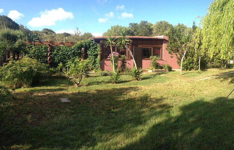 Cottage, South voortuin. Let op de aangrenzende veranda met de zijkanten bedekt met groen.