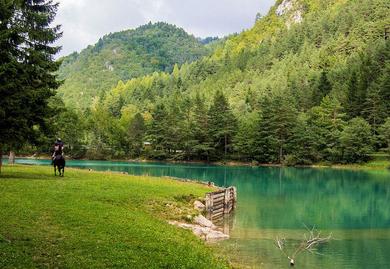 Die schöne Završnica See ist ein 6-8 Minuten zu Fuß von unserer Wohnung.