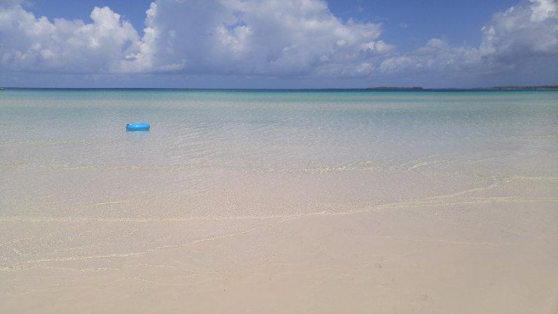 receptores Beach