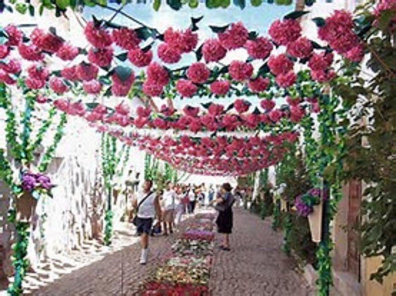 rues décorées pendant la Festa Tabuleiros a lieu tous les 4 ans. Suivant Juillet 2019