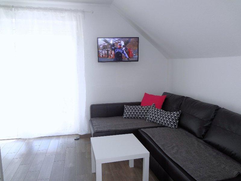 Ein Flachbild-TVs mit 130+ digitalen Kanälen (darunter mehrere sehr populären Kanäle in englischer Sprache)