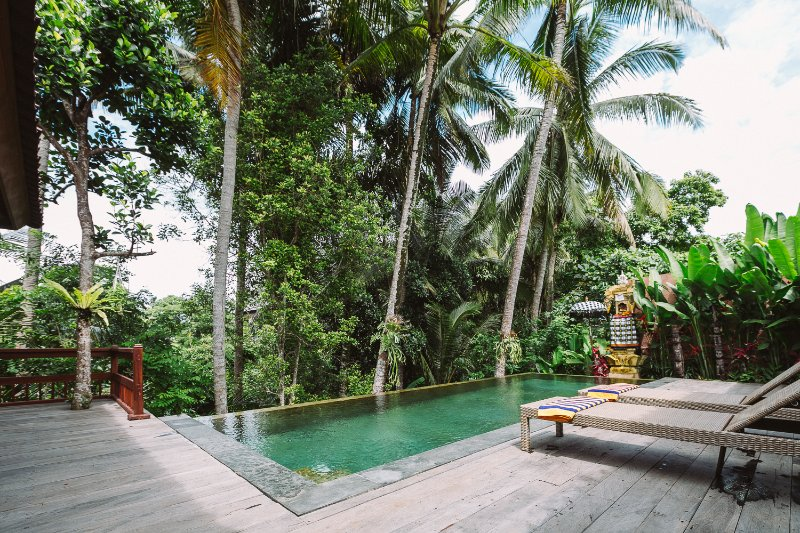 Villa Sunari, a hidden gem in Ubud. Infinity pool in the jungle!