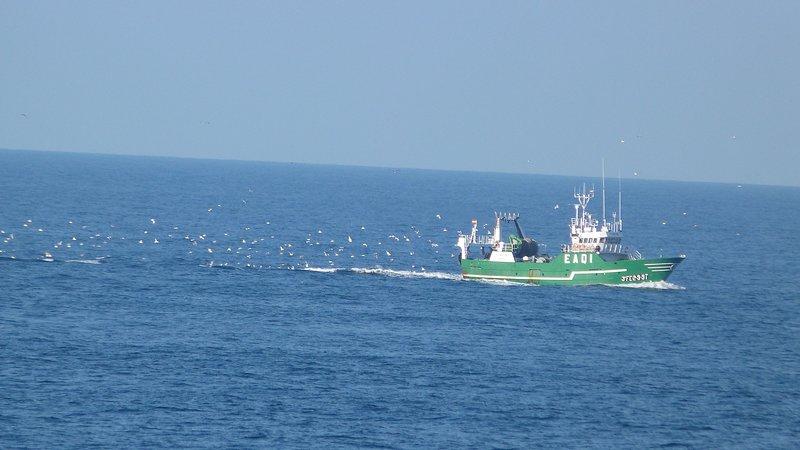 Bateau entrant dans le port de Burela