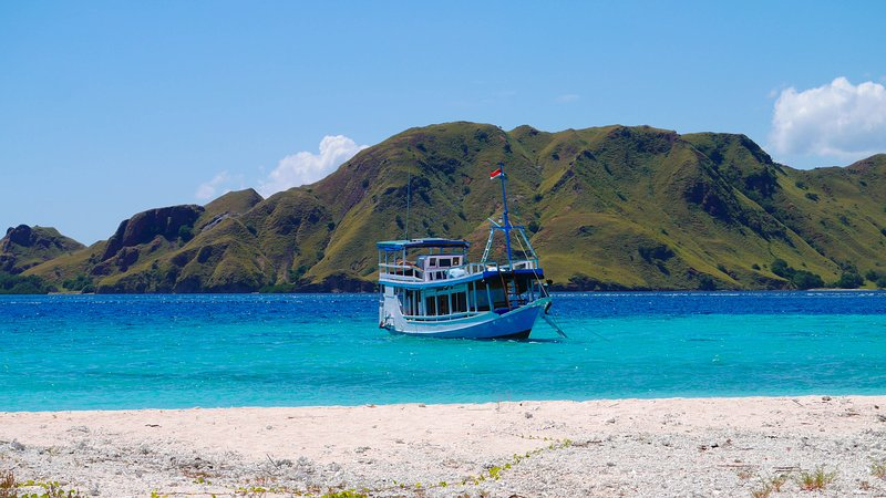 Sailing Komodo - Alam Kaya, holiday rental in Badjo