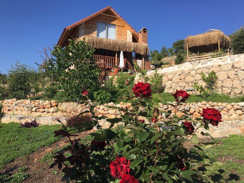 Ambar Evleri, Ceviz Ev, holiday rental in Bezirgan