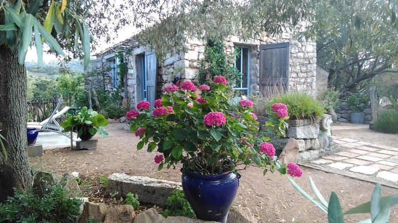2 Stazzu la capretta farm camping bnb guesthouse, holiday rental in Olbia
