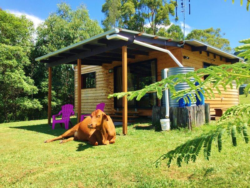 TIMBER GYM - Playground for Grown Ups!, holiday rental in Montville