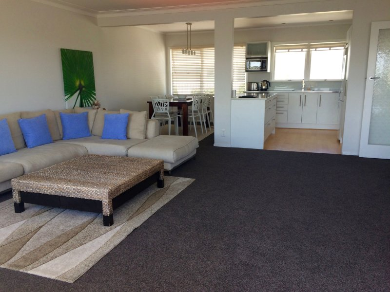 Soft new, quality carpet, extremely spacious, sunny, light, bright and modern.