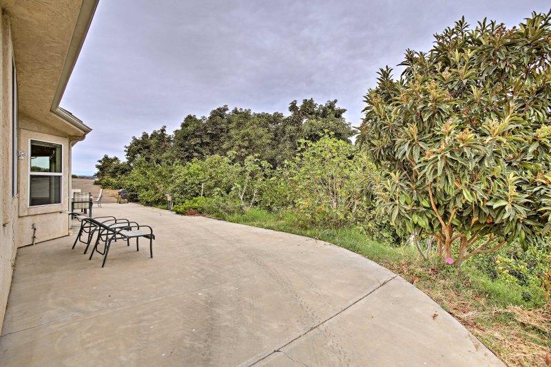 Cette propriété unique est un avocat organique d'exploitation, de fleurs et d'agrumes bois.