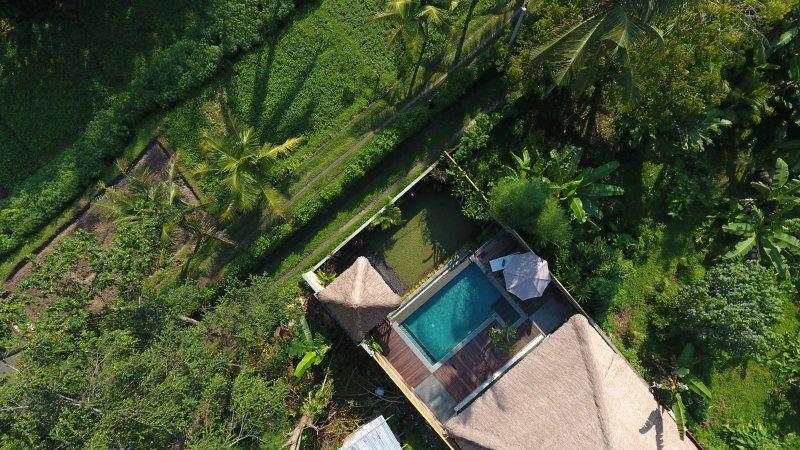 Villa Bedauh Ubud - Hidden Tropical Gem for a Couple and Honeymooner