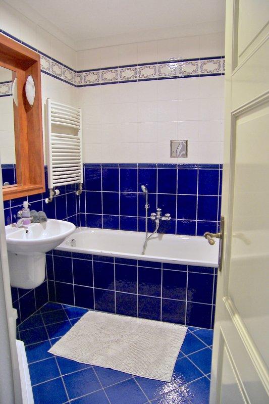 Banheiro. banheira e chuveiro canto.