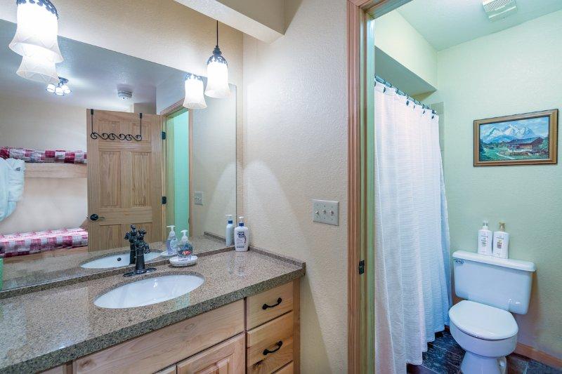 Viking Lodge 217 - de badkamer heeft een gecombineerde douche en bad, en een aparte ijdelheid.