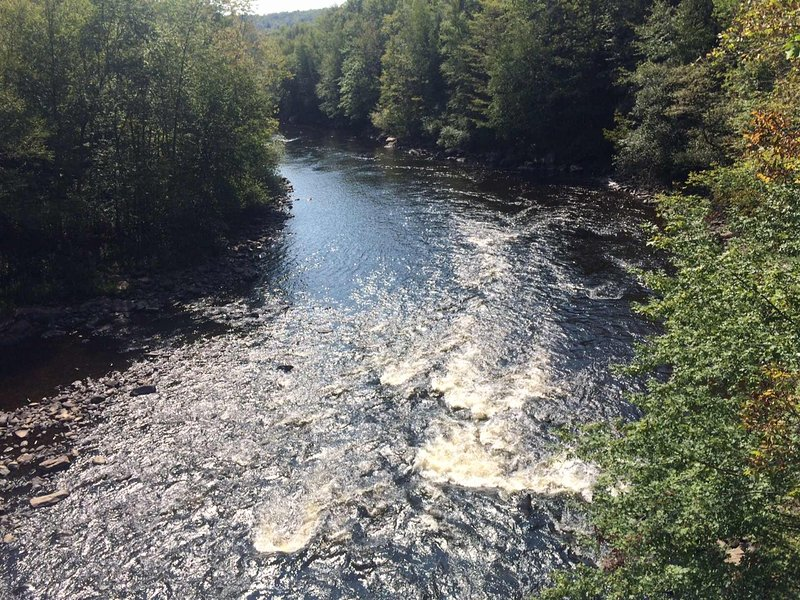 Lehigh River Gorge Trail within 4 miles.