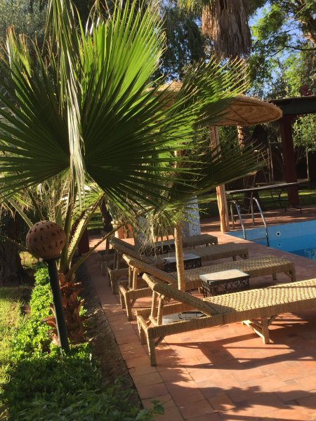 beautiful  countryvilla with big garden ,private pool, staff included, Paradise, holiday rental in Lagouassem
