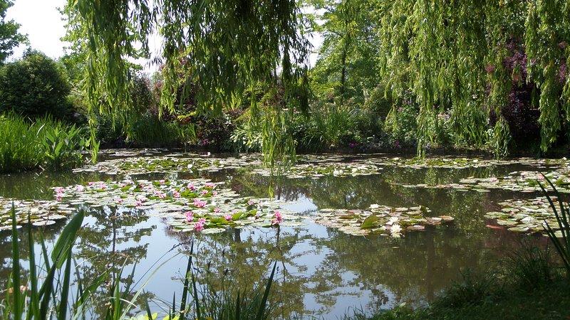 De beroemde Lilly Pond at Monets Garden