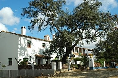 El Repilado Villa Sleeps 4 - 5080239, holiday rental in Galaroza